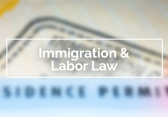 Immigration and Labor Law